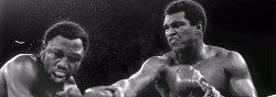 Top 10 Retired Boxers