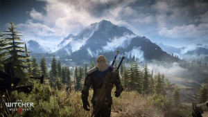 beautiful scenery, The Witcher 3 : Wild Hunt