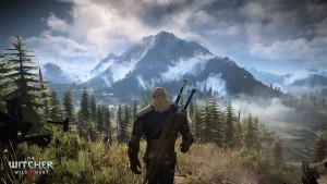 beautiful scenery, The Witcher 3 : Wild Hunt