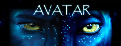 10 Records Avatar Set Worldwide
