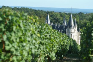top 6 French wine regions