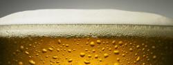 Best 6 US Beers