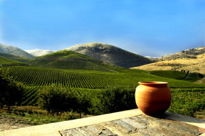 best portugal wine regions