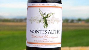 best wines from Chile