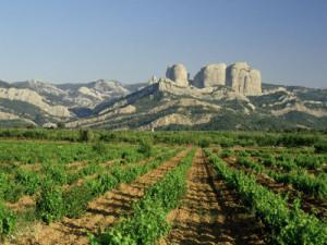 best Spanish wine regions