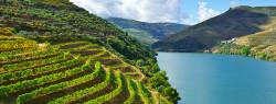 The Top 6 Portuguese Wine Regions
