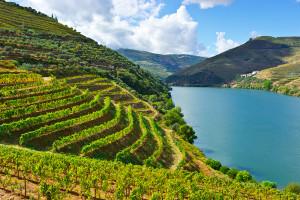 best Portugese wine regions
