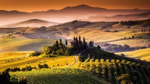 best italian vine regions