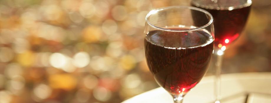 The Top 6 Wines of Uruguay